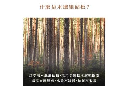 不發霉超抗菌木纖維砧板(大+小)